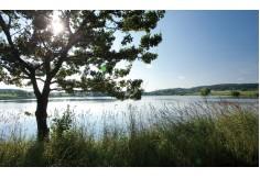 unberührte Natur und Stille genießen ...